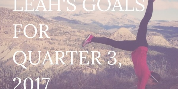 I track my goals quarterly. Monthly is too short and annual is too long to keep momentum. To keep myself accountable, I post them each quarter on my blog AKA the internet for everyone to see! Click through to read my upcoming goals for Quarter 3, 2017.