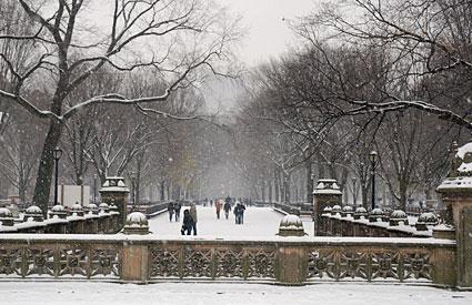 Photos of Central Park in the snow Manhattan New York