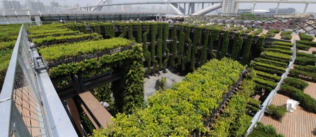Pabellon frances- expo shanghai-2