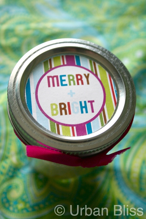 {12 Days of Printable Giveaways} Day Six: Merry + Bright Circle Tags/Labels