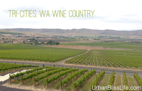 WA Wine Country - Feature Image - 02