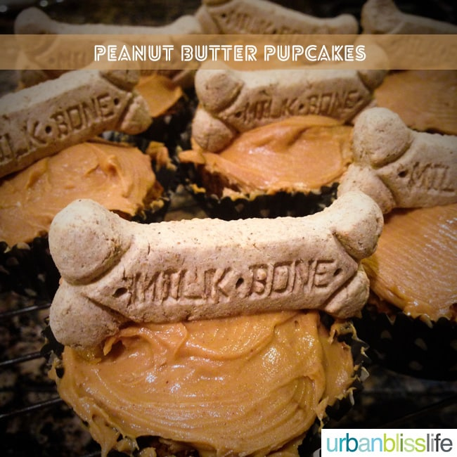 Peanut Butter Pupcakes Recipe Dog Birthday