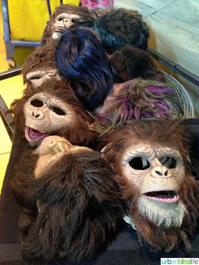 Cirque du Soleil Totem Monkeys