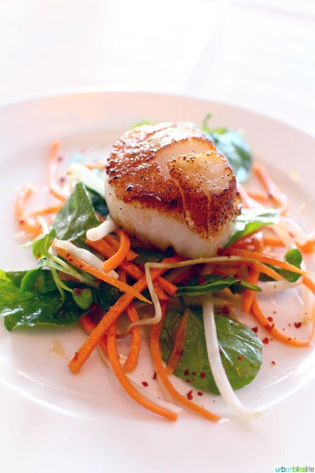 Ringside Fish House Lunch | UrbanBlissLife.com
