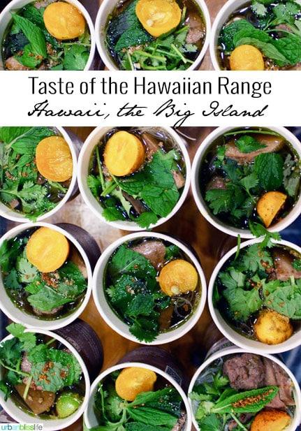 Travel to  Hawaii Island: Taste of the Hawaiian Range