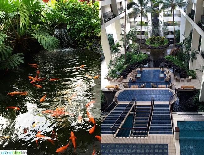 Mauna Lani Resort Pools Hawaii