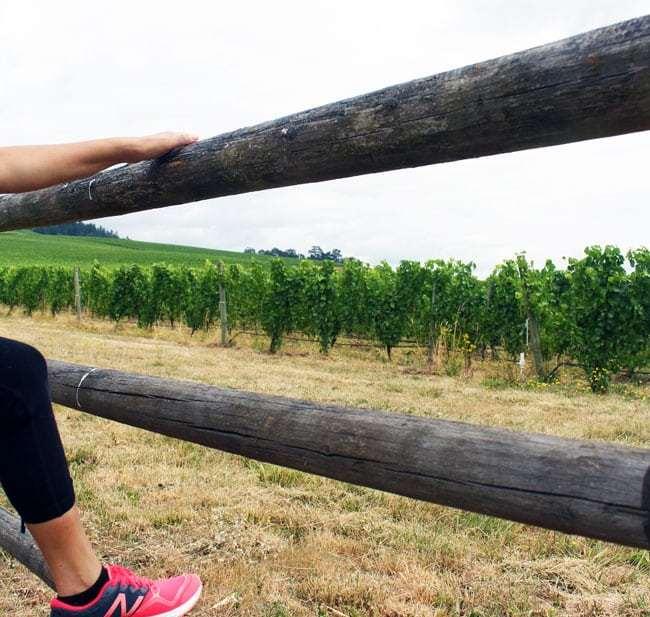 Oregon Wine Country Half Marathon 2015 at Stoller Winery on UrbanBlissLife.com