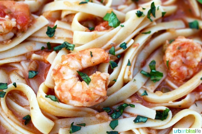 Shrimp Fettucine with Vodka Tomato Sauce recipe on UrbanBlissLife.com