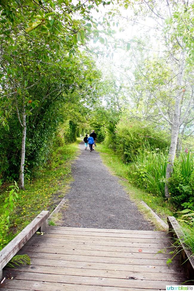 Saint Helens Travel - Summer's End on UrbanBlissLife.com