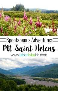 Spontaneous Adventure to Mount Saint Helens, travel bliss on UrbanBlissLife.com