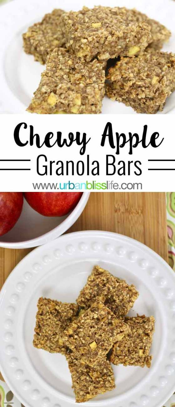 Food Bliss: Chewy Apple Granola Bars