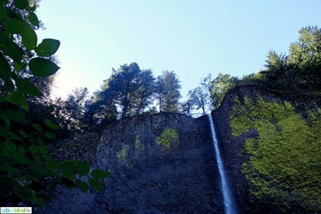 Visit Latourell Falls in Guy Talbot State Park along the Columbia River Gorge in Oregon. Travel tips on UrbanBlissLife.com