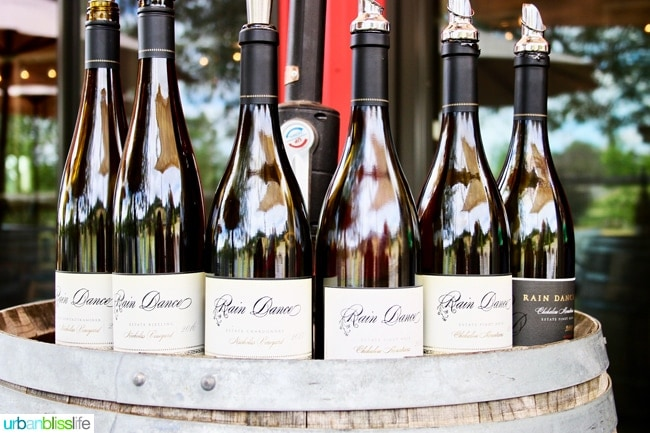 Wine Bliss: Rain Dance Vineyards in Newberg, Oregon