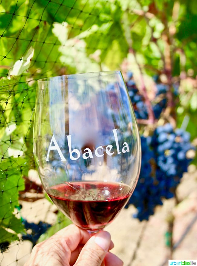 Wine tasting at Abacela Winery in Roseburg, Oregon wine country, on UrbanBlissLife.com