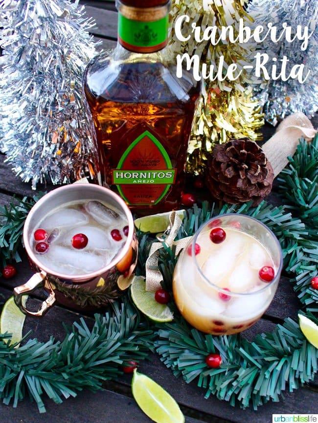 Cranberry Mule-Rita 20 Festive Winter Party Cocktails on UrbanBlissLife.com