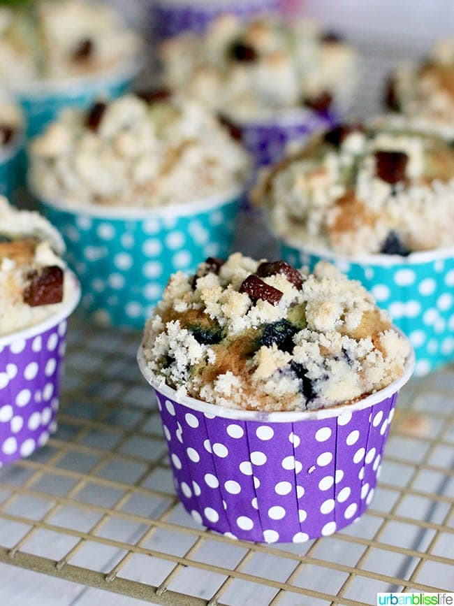 Double Berry Chocolate Chip Muffins