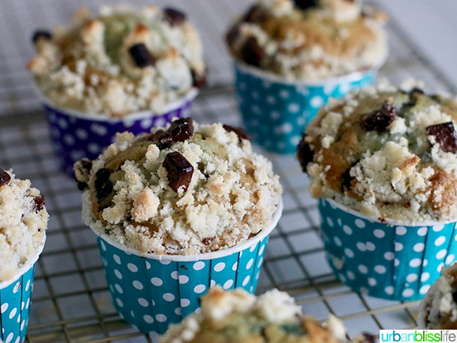 Double Berry Chocolate Chip Muffins recipe on UrbanBlissLife.com