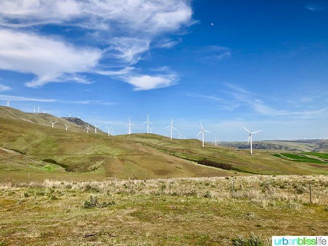 Goldendale, Washington wind farm