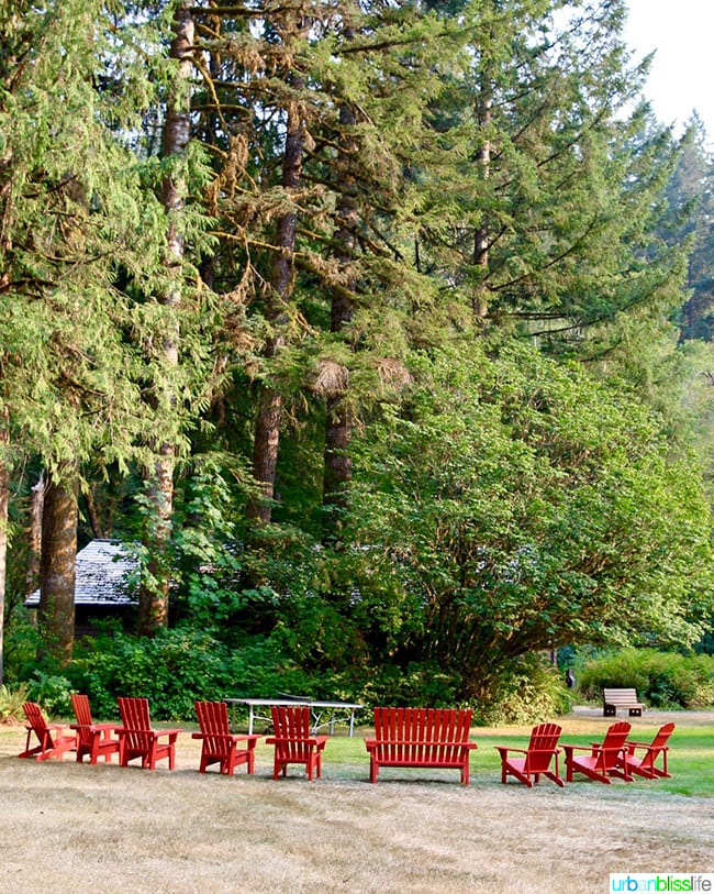 silver falls lodge chairs