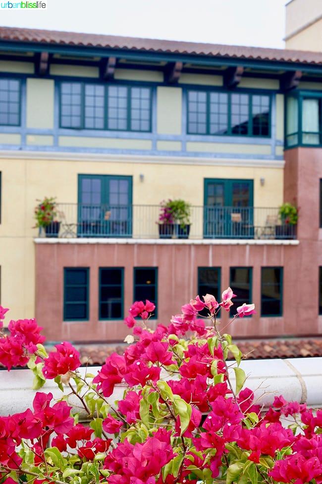 fuschia flowers at Hotel Valencia Santana Row