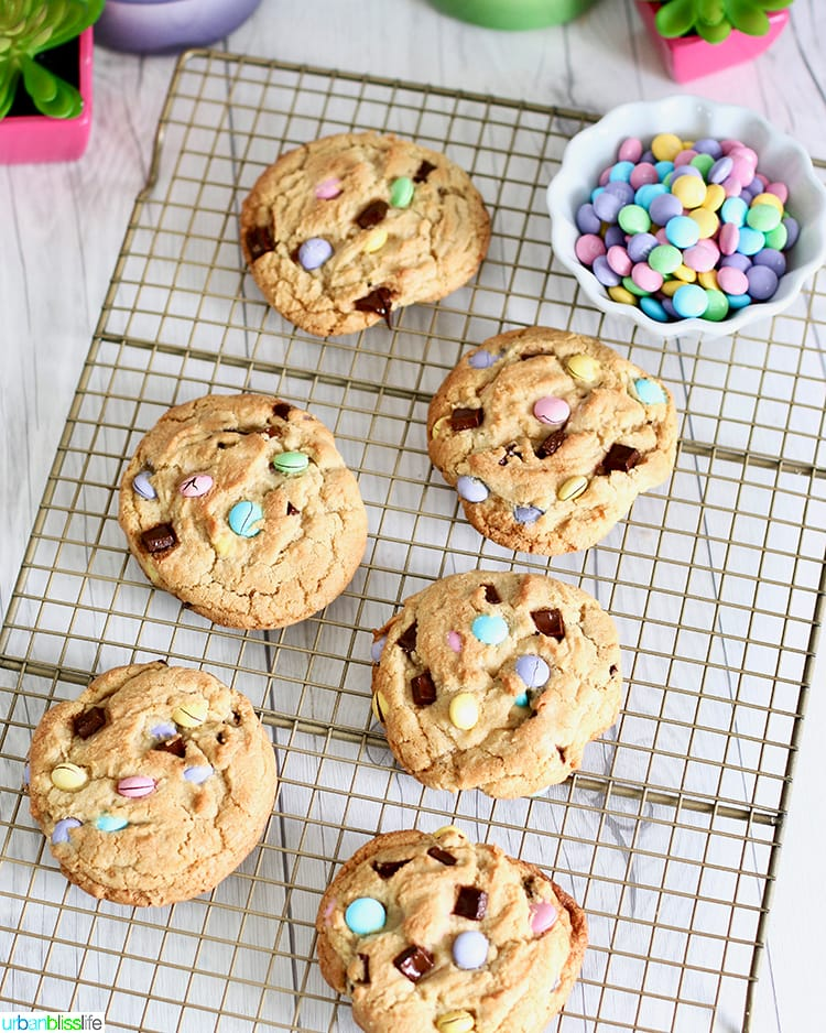 set of Giant Chocolate Chip M & M Cookies on cookie rack
