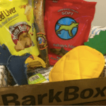 BARKBOX: A SUBSCRIPTION BOX REVIEW