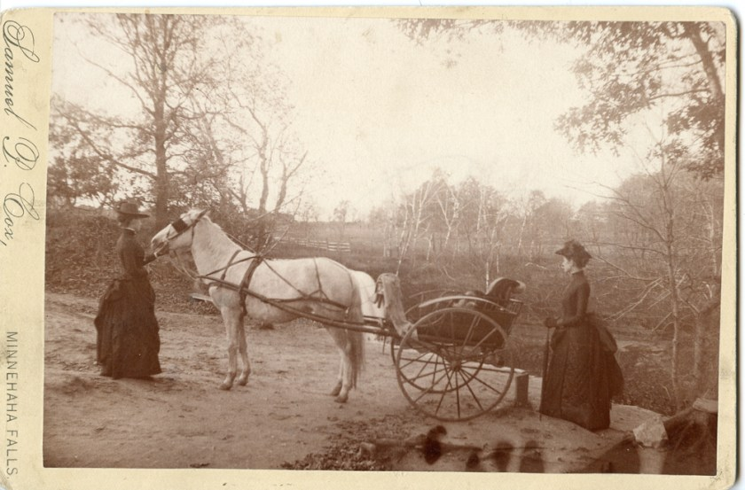 Two young women had their picture taken with their horse and buggy at Minnehaha Falls. Samuel P. Cox had the photography concession at the Falls before during and after the change of ownership in 1889. He was there from at least 1887 to 1891.