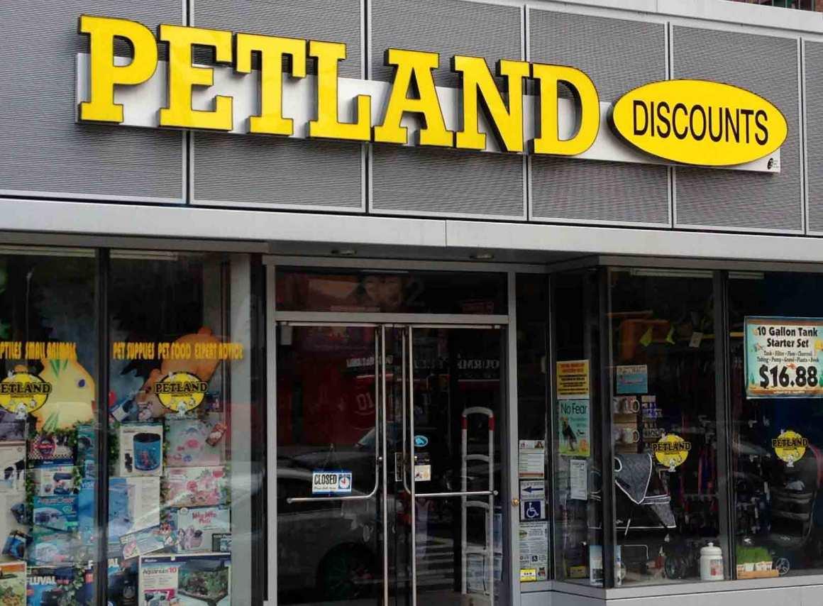 Petland Discounts on First Avenue Pet Friendly