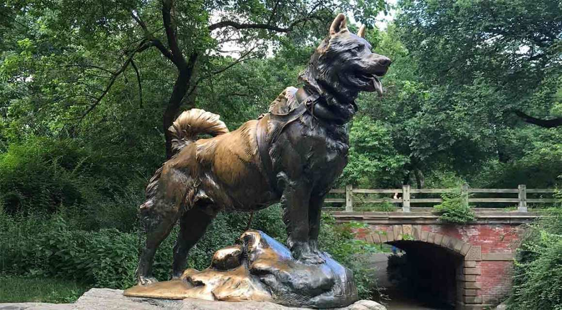 Balto and Other Statues of Dogs in New York City