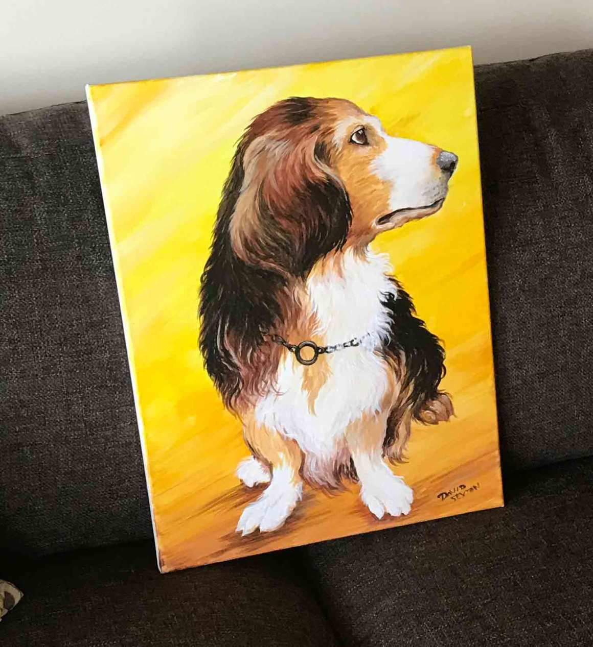 David Sexton Pet Portraits