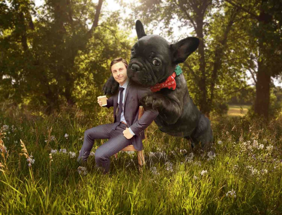 Juji the giant dog