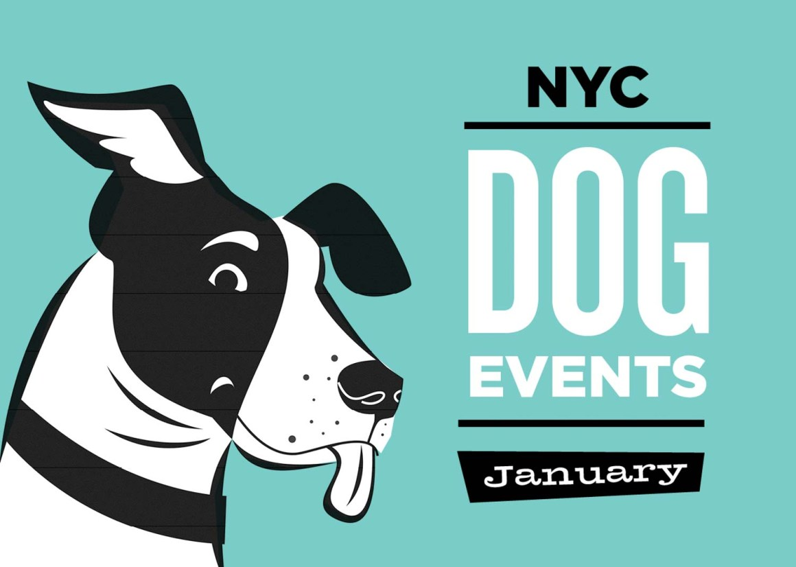 NYC Dog Events Calendar Jan
