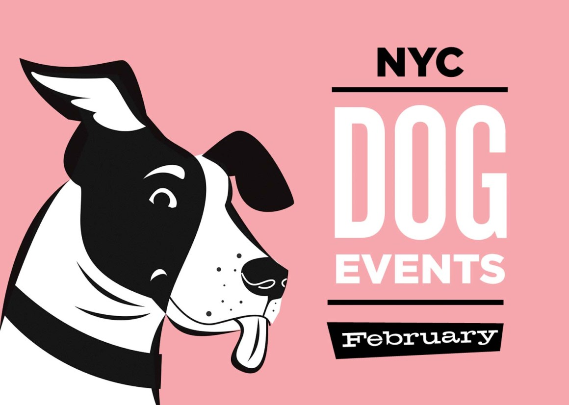 NYC Dog Events Calendar Feb