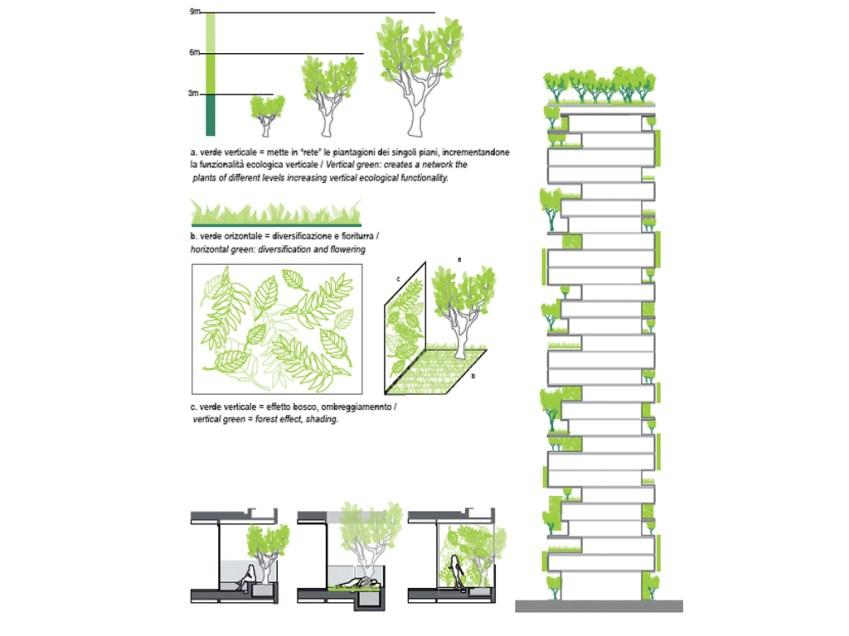 Coupe et typologie de végétation du Bosco Verticale.