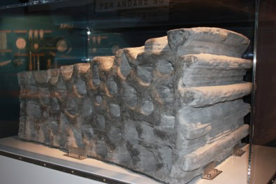 Le prototype de mur alvéolé