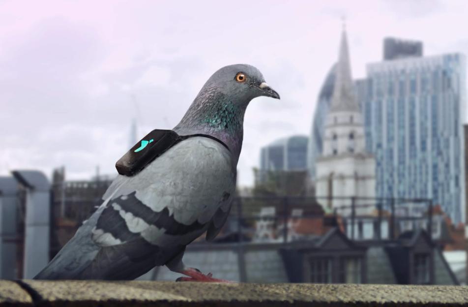 Plume Air Patrol - Londres - Plume Labs