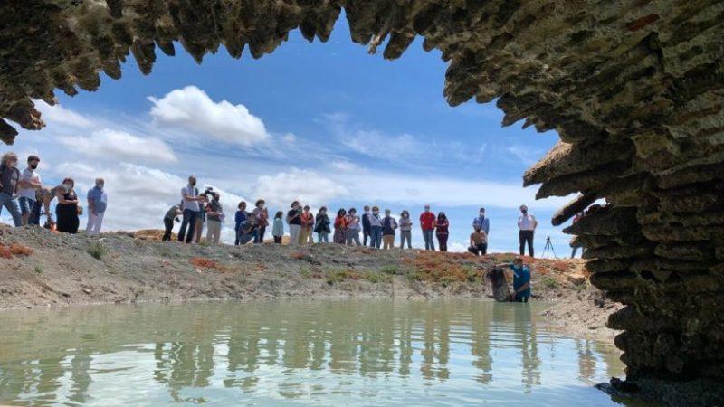 Tres salinas gaditanas participan en el proyecto global de MedArtSal