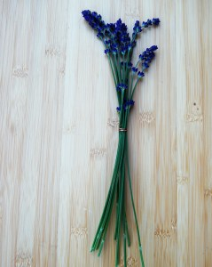 Bunched lavender