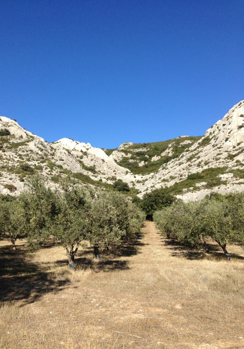 Mountains of Provence