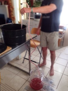 """Ok! The specific gravity of 1.030 has been reached and it's time to drain or """"rack"""" the wine into a carbuoy for primary fermenting. Using a siphon pump to get things going is really helpful."""
