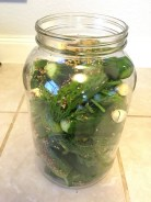 Pack cucumbers in tightly and fill with brine.