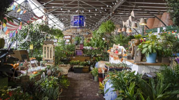 urban garden center -
