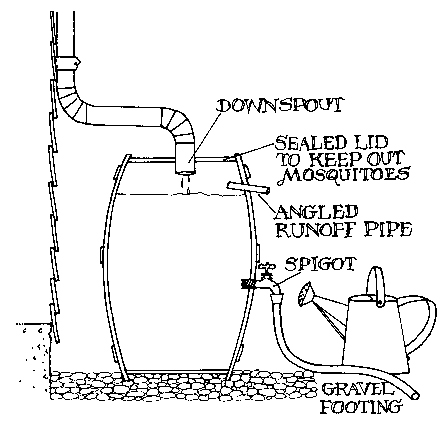 Rain Barrels: It's Pouring with Sustainable, Stylish, and