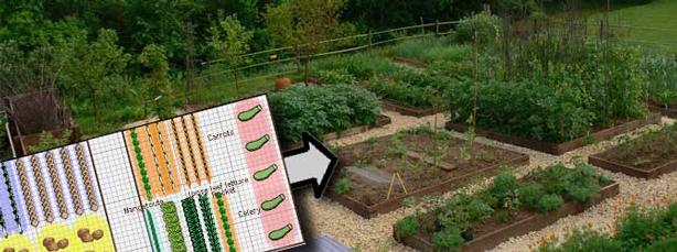 grow-veg