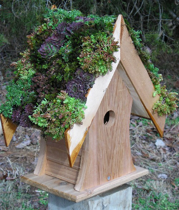 Birdhouse Garden: Are Green Roofs For The Birds?