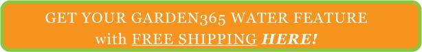 Essero Garden365 Water Feature Buy Here