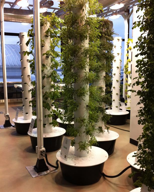 Vertical Garden Chicago