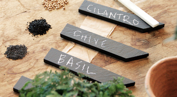 Williams Sonoma Introduces Seed To Table Collection Urban Gardens