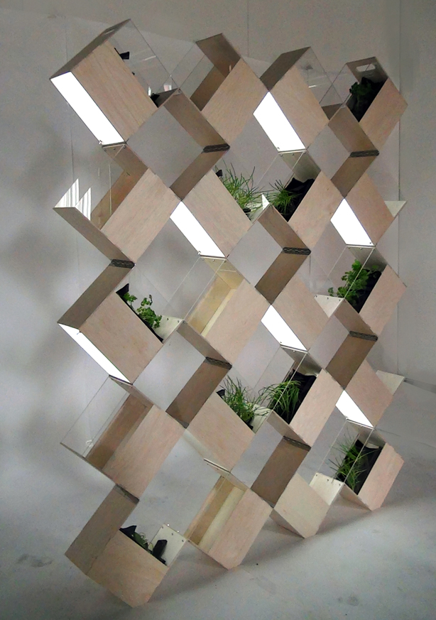 Privacy: Walls & Screens Archives - Urban Gardens