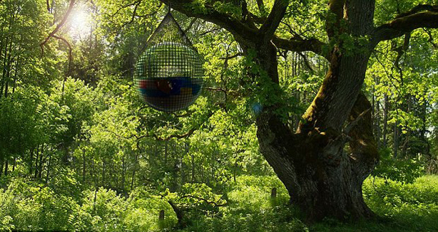 cocoon-in-tree